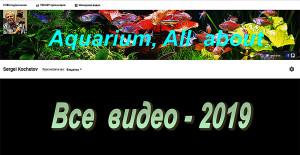 Videochannel 2019 - 249 video