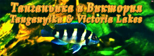 Breeding list 2 Tang and Victoria 2015