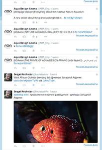 ADA -twitter Publ 2015 3
