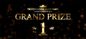 IAPLC 2015 Grand Prize