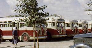 Ptichiy rynok 1956 bus