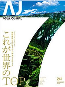 AJ 241 2015