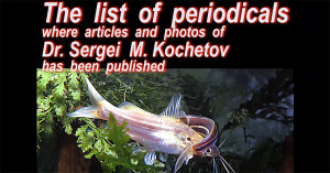 List of Periodicals 2015 1