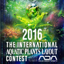 IAPLC 2016 125x125