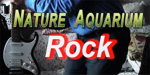 NA rock 2014 film re