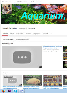 Youtube - 2015 web