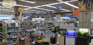 ADA Yokohama shop