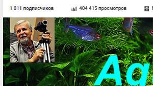 videochammel 1011 - 404 414