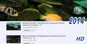 All videos 2009-2015 1