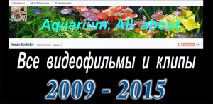 All videos 2009-2015