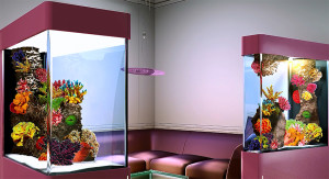Aq Interiors 7