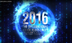 IAPLC 2016 treiler