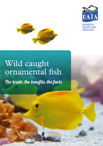 OATA Wild caught ornamental fish