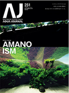 Amano AJ #251
