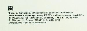 mzoo-1981-back-re