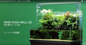 ADA 2017 DOOA Wall 60