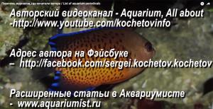 Aqua periodicals 2015-2017