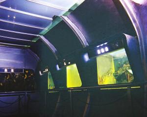 Aquarium zoo 2 ed