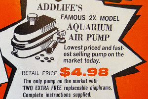 TFH 1958 fragment advert 5 pump re