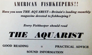TFH 1958 the aquarist adv re