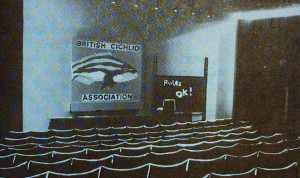 BCA 1978 conventiion