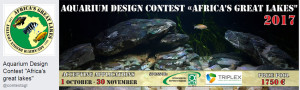 The Great African lakes 2017 Contest