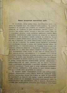 Ottisk Zolotnotsky 1907