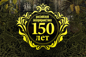 Russian aquaristics 150 years video re ed