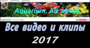 All videos 2017