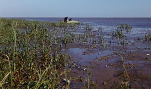 Hanka lake wind
