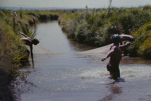 Lefu river near Khanka lake