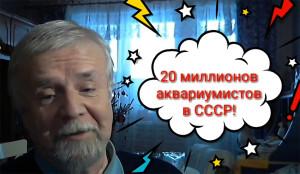 USSR aquaristics 2018