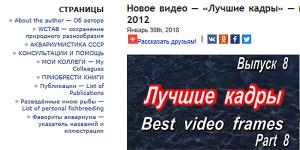 Web site Sergei 1 - 2018