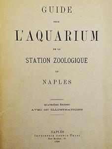Aq Naples 1898 2