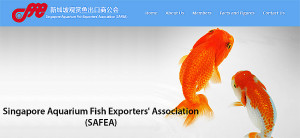 Singapore Aquarium Fish Exp Assn 1989-2017