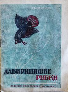 Molchanov 2 1948-2018 video ed