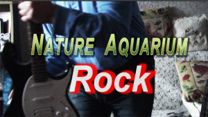 NA rock 2014 Octobe re