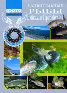 Baikal fish cover 2017 - Алексей Гулин