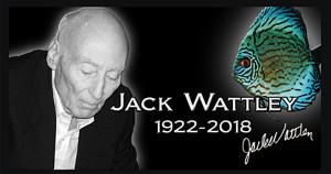 Jack Wattley 2018 ed