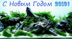 ADACON_14_03