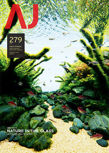 AJ#279