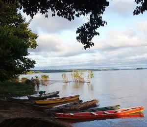 Amazonas 1 2019