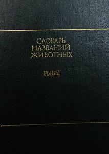 Slovar 1989 2019 4
