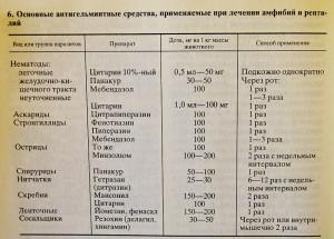 Terrarium Kudrjavtsev 1989 - 2019 3