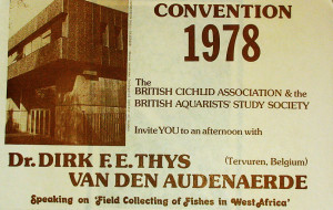 BCA 1978 conventiion 1