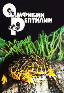 Terrarium Amohibia - reptiles 25 2014