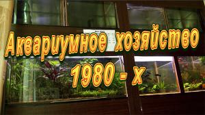 Aq Malutin 1980 2019
