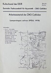 ZAG Cichliden 1