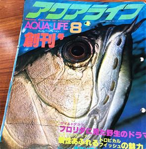 Aqua Life 1979 - 2019 1