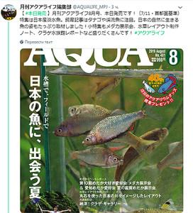 Aqua Life 1979 - 2019